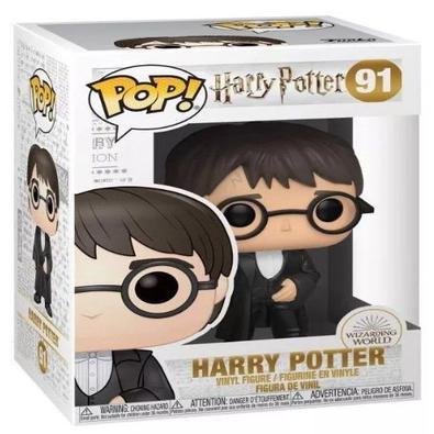 Harry Potter nasceu em 31 de julho de 1980, filho de Tiago Potter e Lílian Evans Potter. No fim da Primeira Guerra Bruxa, ele teve que ir morar com se